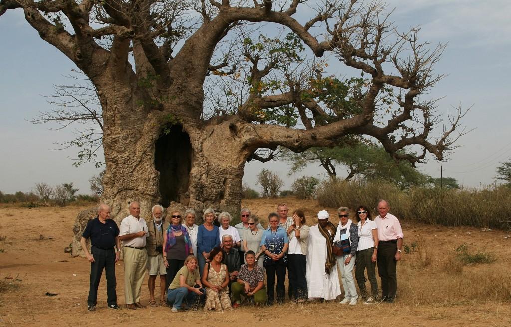 Groupe adhérents AIAPL devant baobab - voyage Sénégal 2011 - JX1953