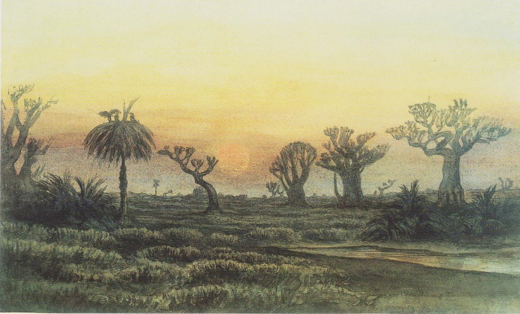 Marais-Cap-Vert JV 1873-p118