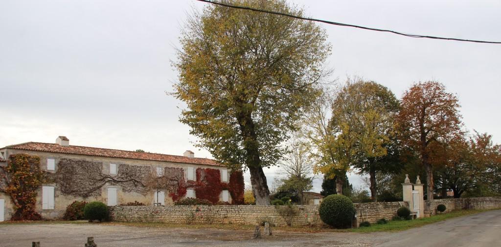 Dix novembre 2017-Rochefort-Echillais 046-1