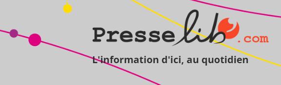 Logo press-lib.com